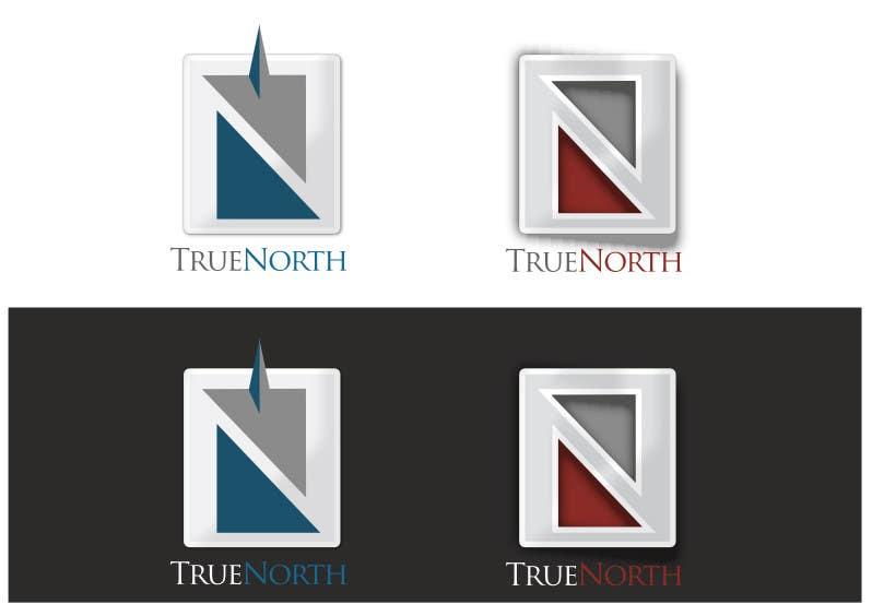 Konkurrenceindlæg #4 for Logo Design for True North Scientific