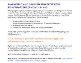 #9 for Marketing plan for my business. Help me to work out a meaningful project description. NO SEO af NidhritiBhowmik