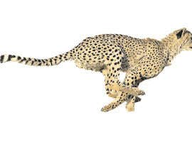 #8 for design real cheetah like this picture by bikajkula