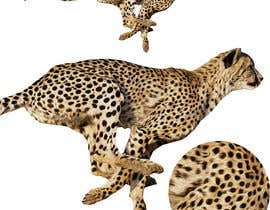 #9 for design real cheetah like this picture by Shehab8056