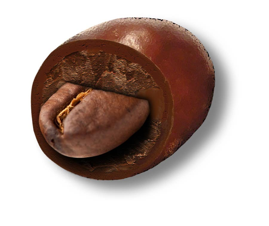#7 for HD Image of coffee bean coated in chocolate by Batmanci