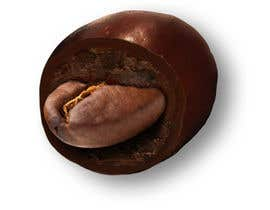 #13 for HD Image of coffee bean coated in chocolate af Batmanci