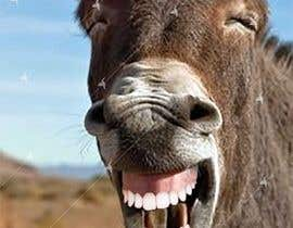 #17 for Photoshop in nice teeth into 2 animal photos (Funny picture required) by Awal01