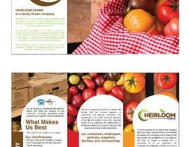 eling88 tarafından Design a brochure için no 11