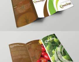 ChiemiDesigns tarafından Design a brochure için no 14