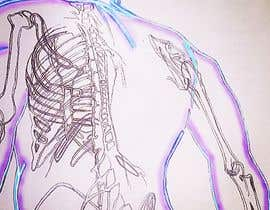 baashbroughton tarafından Human anatomy drawings for Traditional Chinese Medicine Project için no 21