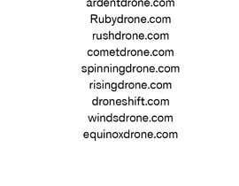 #14 untuk Drone Store Name for Shopify Store ($500 Bonus Prize) oleh arigo60