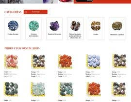 Nro 11 kilpailuun Graphic Design for a Website käyttäjältä Shanu623