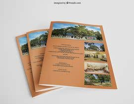 #43 untuk Two Logo Designs and a Flyer For an RV Park oleh poddosanta1
