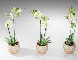 kvinke tarafından Photorealistic 3D model of different plants including PBR Maps (Albedo, Normal, Roughness, Specular) için no 6