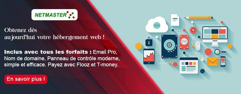 Contest Entry #33 for Facebook Ads for small web hosting company (3)