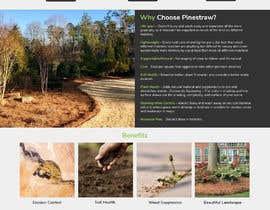 Nro 11 kilpailuun PineStraw-Build a website käyttäjältä freelancersimar