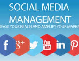 #10 for Social Media Marketing Management by erinjahan55