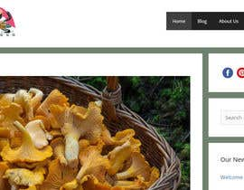 #68 para Logo and Banner Design for Mushroom Blog de ARjakir