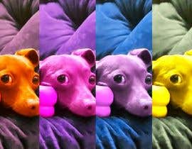 yusufsmart11152 tarafından Add effects to a photo of my dog Buddy için no 12