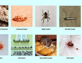 #17 untuk pest control banner and table cover design oleh rupo0m