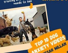 Nro 3 kilpailuun 3D Ecover for training videos - dog anxiety käyttäjältä skratul