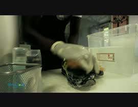 #37 untuk Video Pro Clean Protec oleh davinciresolver