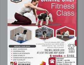 #142 untuk Flyer for my Canine Fitness Training Class oleh yunitasarike1