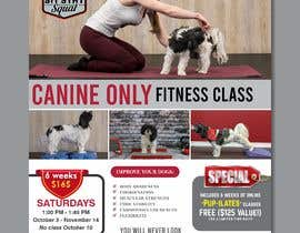 #210 untuk Flyer for my Canine Fitness Training Class oleh yunitasarike1