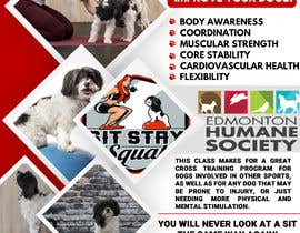 #247 untuk Flyer for my Canine Fitness Training Class oleh mdnaved