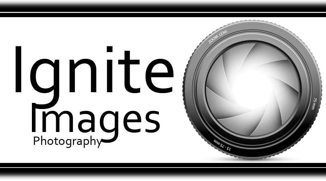 Bài tham dự cuộc thi #14 cho Logo Design for a Photographer