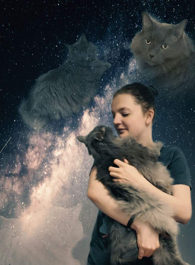Contest Entry #                                        131                                      for                                         Cheesy Cat Picture with my Wife.