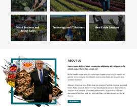 #146 for Graphic Design Layout Mockup for Redesigned Corporate Website af WebCraft111
