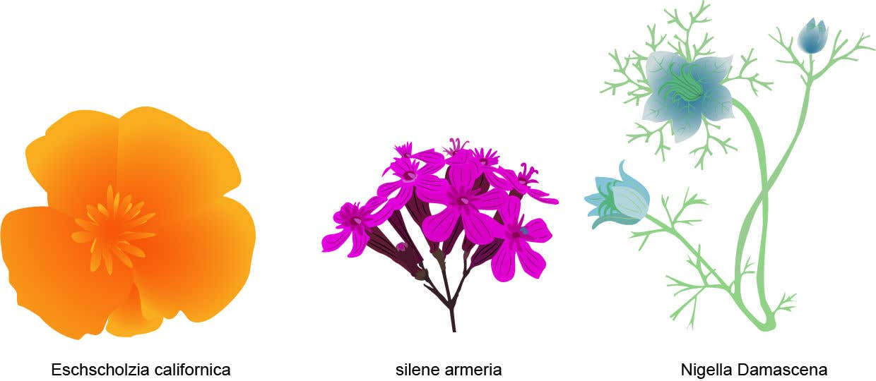 Contest Entry #                                        57                                      for                                         Vector Flower Icons