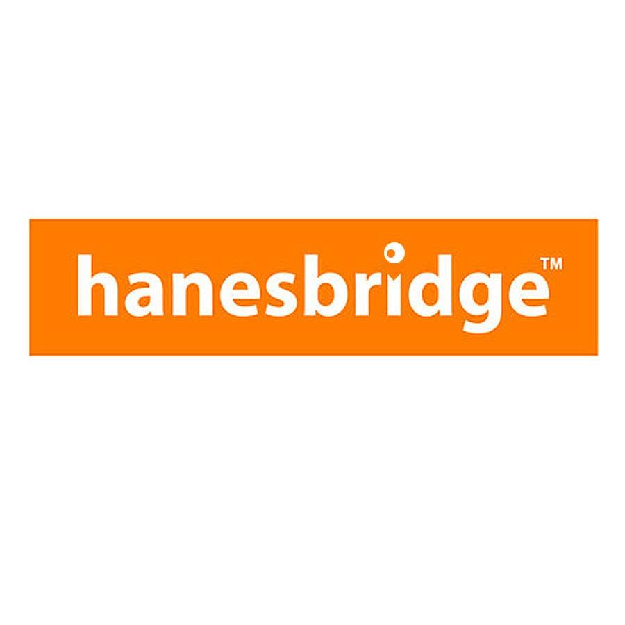 Konkurrenceindlæg #                                        41                                      for                                         Modify a Logo for hanesbridge