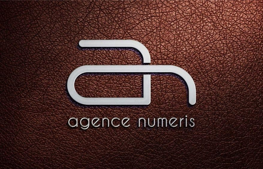 Contest Entry #                                        47                                      for                                         Create logo for Agence Numeris