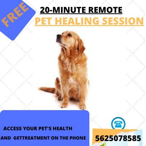Contest Entry #                                        9                                      for                                         Need Pet Healer Ad Created for Craigslist