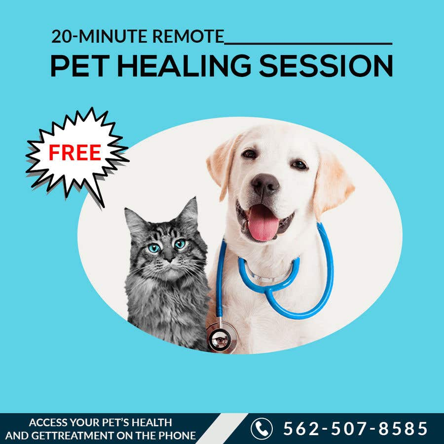 Contest Entry #                                        8                                      for                                         Need Pet Healer Ad Created for Craigslist