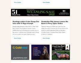 #36 untuk Newsletter redesign oleh Turismoo