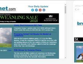 #34 untuk Newsletter redesign oleh sagarsarkerfl