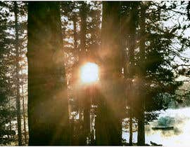#18 for Advanced PhotoShop editing for an outdoor image with sun flare. by shumon8