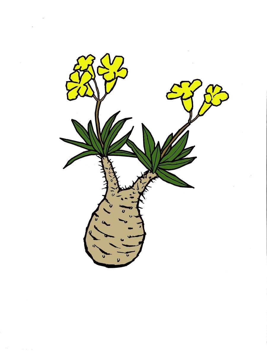 Penyertaan Peraduan #                                        20                                      untuk                                         Botanical illustration needed