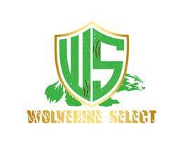 #34 for Logo for Basketball team (Wolverine Select) af Gourab67