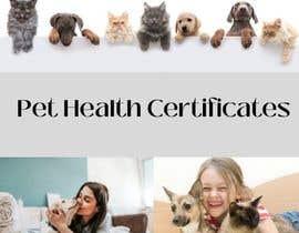 Nro 15 kilpailuun Create a website mockup for a business that offers pet health certificates käyttäjältä tasali1033