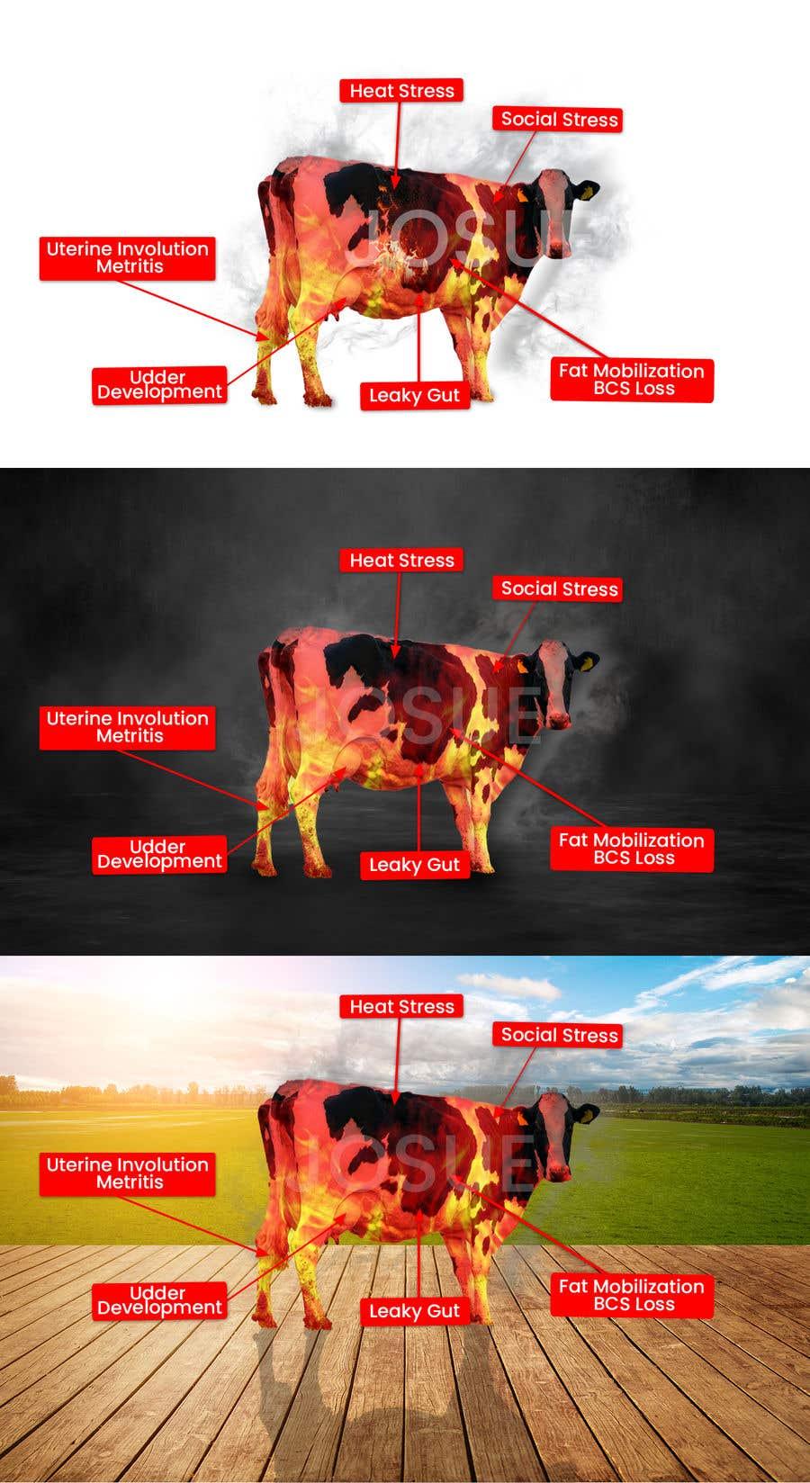 Kilpailutyö #                                        36                                      kilpailussa                                         Make me a Cow Fire Graphic