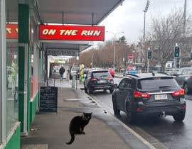 Nro 67 kilpailuun Photoshop Black Cat into an image. käyttäjältä Mdreyadislam686