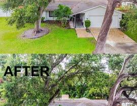 Raiyan98 tarafından edit my photos to clean up the driveway and the roof debri and dirt için no 14