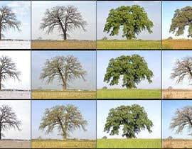 EasoHacker tarafından Website buttons with tree through season için no 4