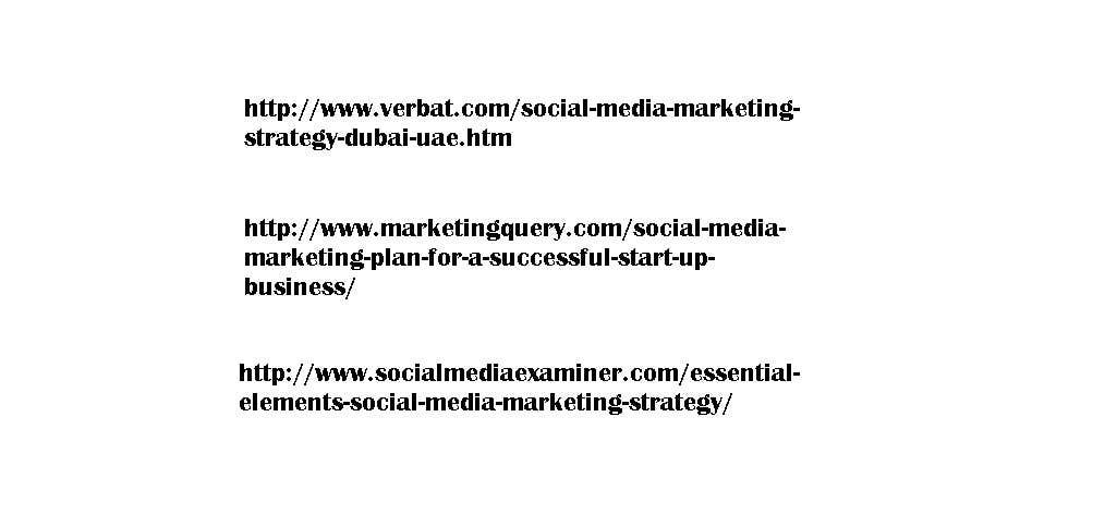 Kilpailutyö #10 kilpailussa Social Media Marketing plan for Fishing site