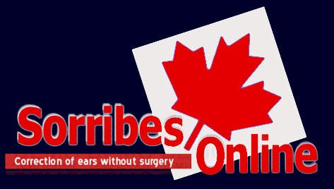 Bài tham dự cuộc thi #25 cho Design a Logo for Sorribes
