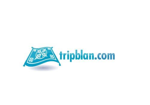 Konkurrenceindlæg #37 for Design a Logo for a Travel Social Network