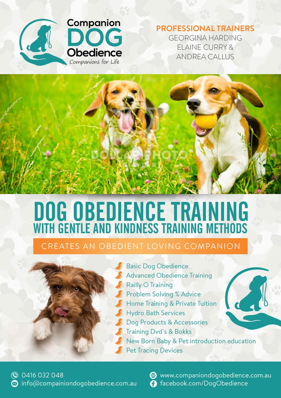 Dog obedience: a selection of sites
