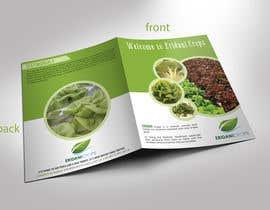 Nro 28 kilpailuun Design a Sales Brochure käyttäjältä stylishwork