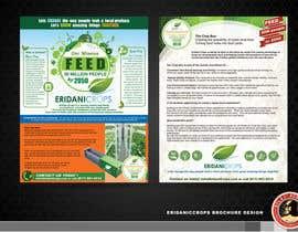 Nro 19 kilpailuun Design a Sales Brochure käyttäjältä KilaiRivera