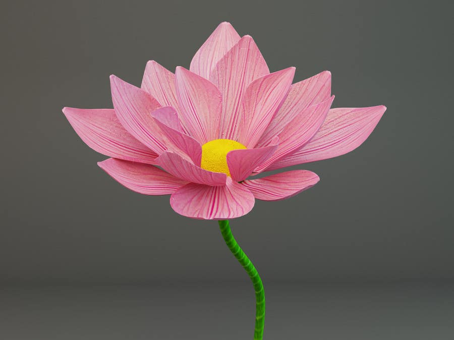 Entry 4 By Fi6 For Design Me A Product For Lotus Flower Inflatable